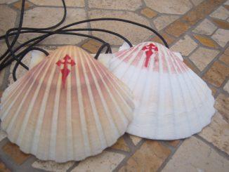 Uno dei simboli del pellegrino diretto a Santiago de Compostela